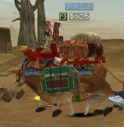 ラクダin牛